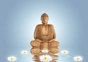 Buddha& Lotus
