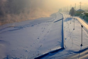 Trans Winter_s