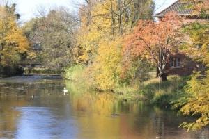 Herbststimmung_s