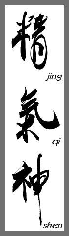 JING_QI_SHEN_Kalligraphie